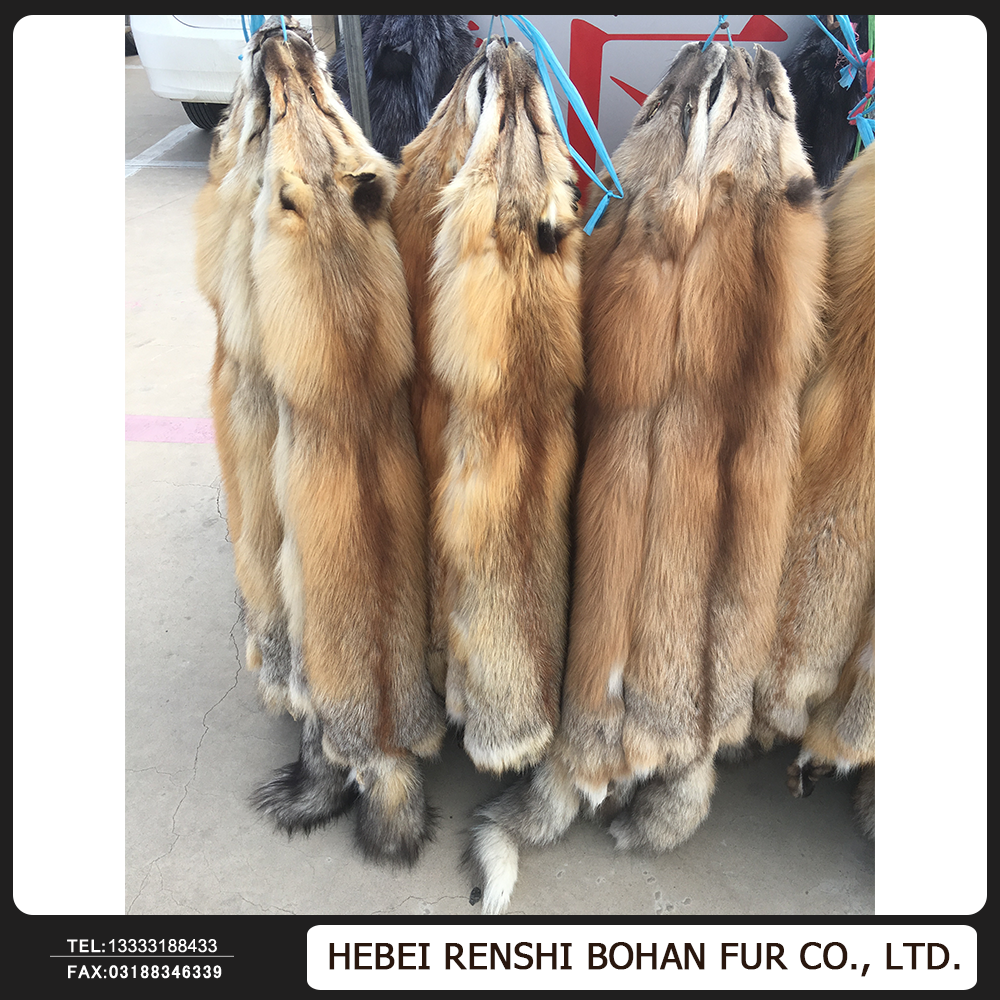 Tanned Red Fox Fur Skin / High Quality Arctic Fox Fur / Real Red Fox Fur