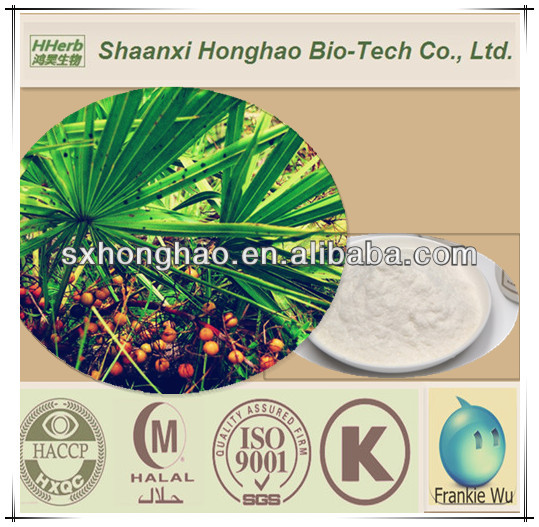 Natural Bulk Saw Palmetto Dry Extract 45%