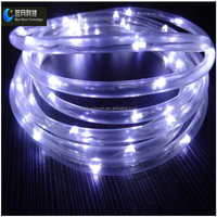 LED white color 2m 20ed copper wire transparent tube light with 2AA battery case