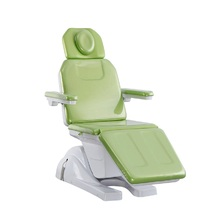 Triumph Royal Korean Full Body Electric Massage Bed / Beauty Salon equipment Dental chairs