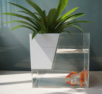 Acrylic box/Fish Bowl/ cheap large clear fish tank