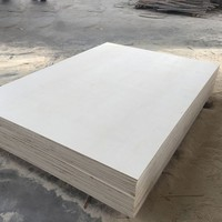 PACKING GRADE LVL/STRONG WOOD/LVL PLYWOOD MANUFACTURE PRICE