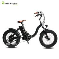 New Hot sale Cool electric bike with strong power