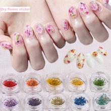 pinpai brand 2017 fashional decoraction 10 colors 3d nail art natural dry flower