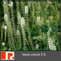 black cohosh P.E.(Triterpene Glycosides)