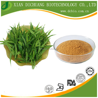 Anti-cancer herbs Sabah Snake Grass extract / Clinacanthus Nutans P.E./ Drooping Clinacanthus Extract Powder 5:1 10:1 20:1