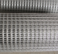 "1"" Welded Mesh From Factory Wholesale"