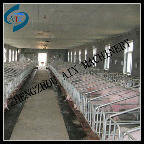 2013 hot sale pig farming house for sows