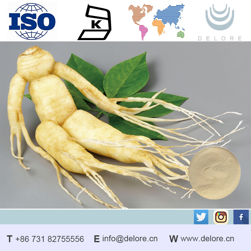 Free Sample for High Quality Health Herb Medicine,100% Natural Panax Ginseng Root Extract