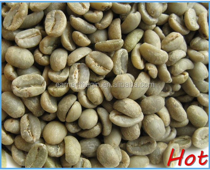 Green coffee bean Grade AAA arabica coffee beans