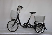 Small Cargo Three Wheels Electric Bicycle