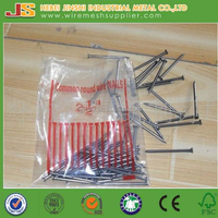 Good quality Common Nail Iron Nail Factory