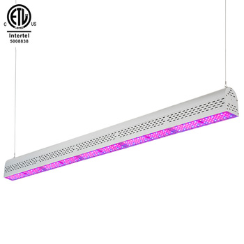 USA Canada ETL cETL full spectrum greenhouse medical plant led grow light outdoor