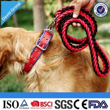 Wholesale Fashion Dog Leashes Pet Collar & Leash