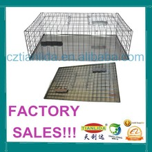 Metal Wire Bird Trap Cage,Metal Wire Pigeon Trap Cage---TLD2020