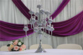 IDA tall candelabra wedding centerpieces for wedding table decor(IDACH03)