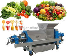 Top-rated High Quality Stainless Steel Double Screw Lime Squeezer Machine