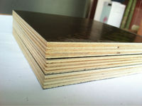 Feixian Fengxiang Wood industry/commercial grade plywood