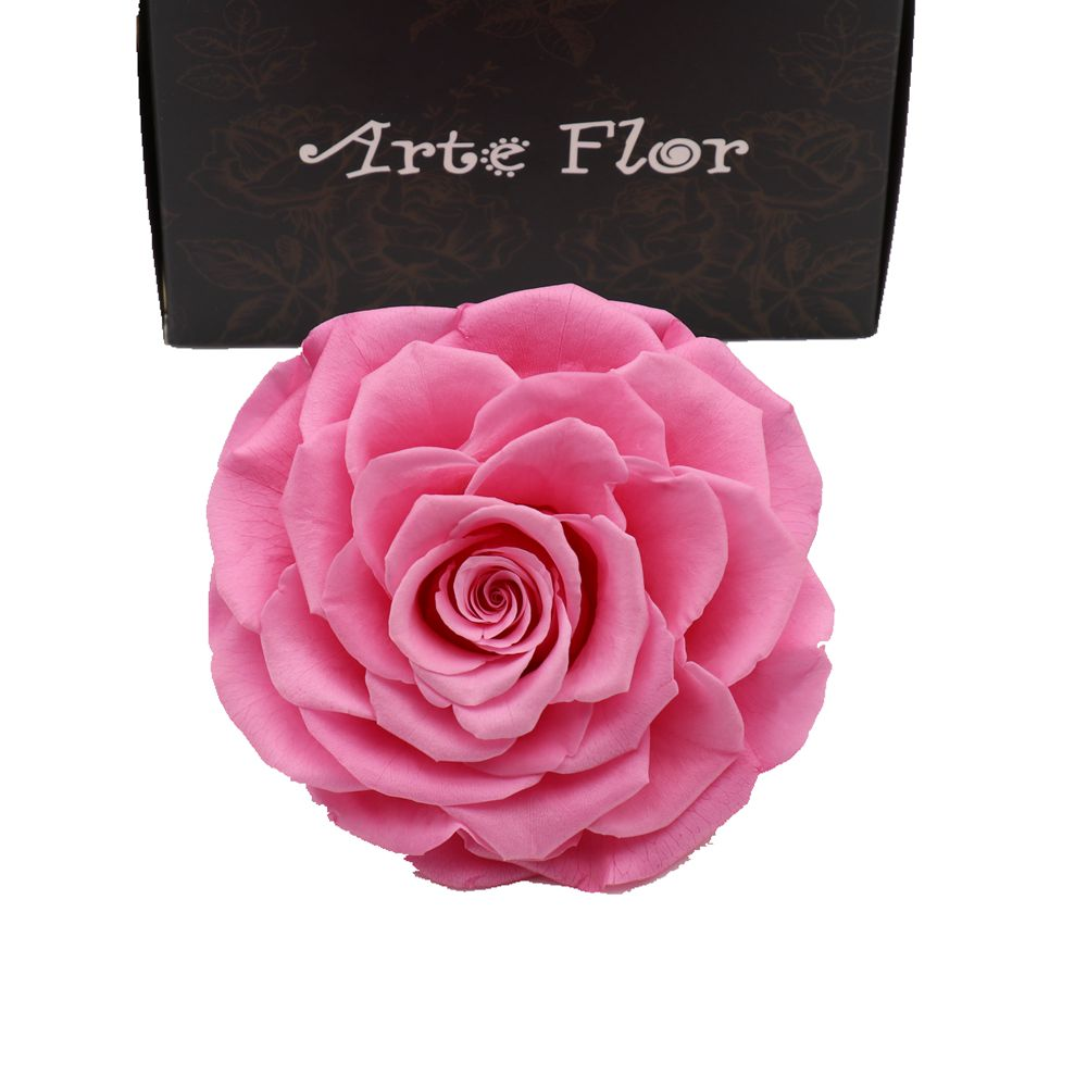 new 2017 gift ecuador huge fresh flowers real 9-10cm preserved pink roses head