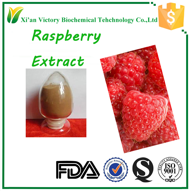 ISO standardized factory supply low price high quality raspberry extract