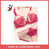 Ladies Sexy Lingerie Hot Wholesale Panties and Bras Parent Panties and Bra latestWestern Style Sexy Lingerie Transp