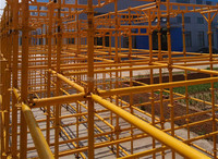 SGS Approved Paiting Steel Ringlock Scaffolding System for Construction Project