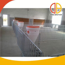 Poultry equipment insemination pig stalls