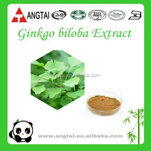 Chinese Factory Direct Supply Ginkgo Biloba Leaf Extract for improving memory