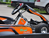New Generation CE Approved 200cc Racing Go Kart Wholesale