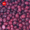 best price Frozen fruit frozen cranberry for sale