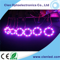 Clen design 8/16/24 WS2812 digital RGB LED for ring clock