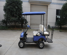 Mini small 2 Seater cheap Folding 4 wheel drive electric golf cart for sale