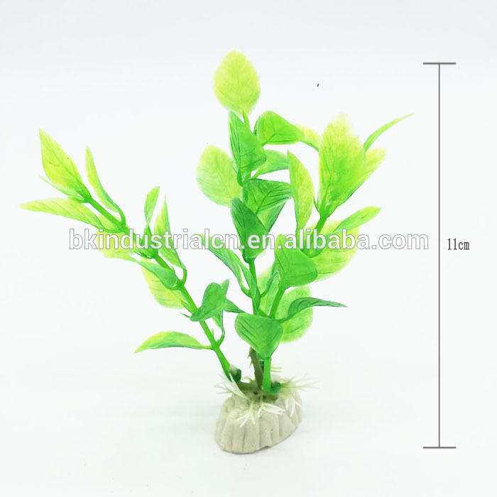 Liechtenstein Aquarium Natural Plant Accessories Plant Aquariums ...