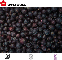 China 2016 new crop Wholeslae price IQF frozen black currant color