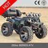 High Quality 250cc Cheap Atv For