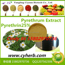 Pyrethrum insecticide .pyrethrum extract 25% 50% Pyrethrin
