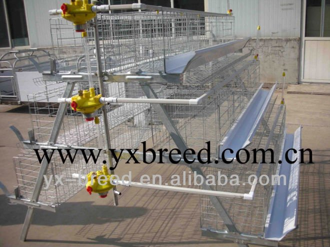 high quality metal wire layer chicken cages