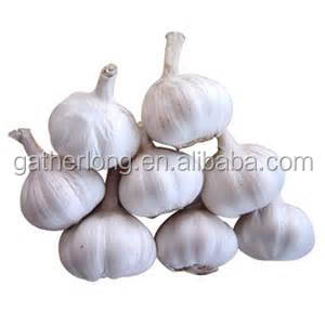 Chinese Fresh Elephant Garlic for Selling