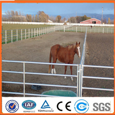 2015 hot sale Hot dipped galvanized livestock yard panels for cattle/sheep/goat(professional manufacturer)