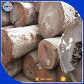 From Africa Hot sales Izombe logs