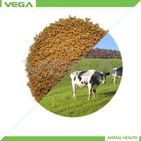 Poultry Feeding Protected Lysine 30%/50%,Poultry Feeding Rumen Protected Lysine 30% Additive