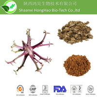 High Quality Brown Powder 5% Harpagoside devils claw extract/devils claw herb