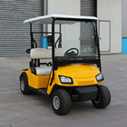 Zhongyi low Price 2 seater battery powered golf cart with CE