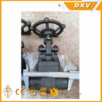 manual operate risign stem Monel forge globe valve