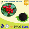 Natural plant 25% Anthocyanidin Cranberry Extract Powder