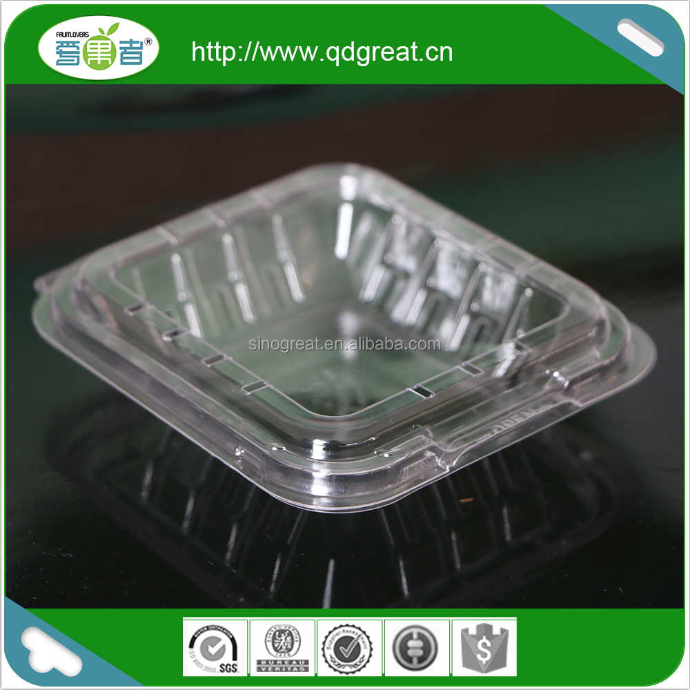 Food grade clear PET plastic fruit packaging container with air holes for fresh blueberry