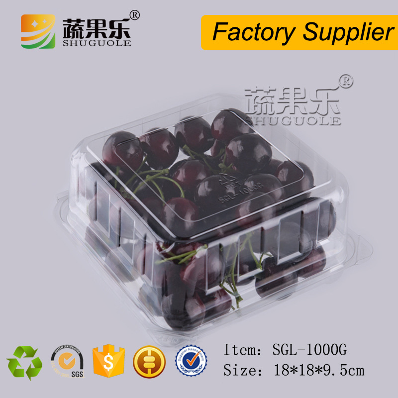 Large disposable PET plastic fruit packing box