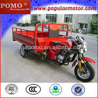Hot Selling China 2013 Cheap New Popular Gasoline Cargo Reverse Three Wheel Motorcycle