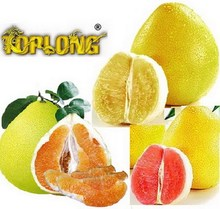 color pomelo (shaddock)