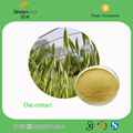 Oat Extract Latin Name avena sativa L